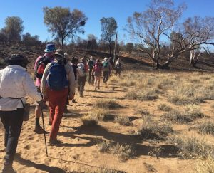 Hike for Youth Homelessness
